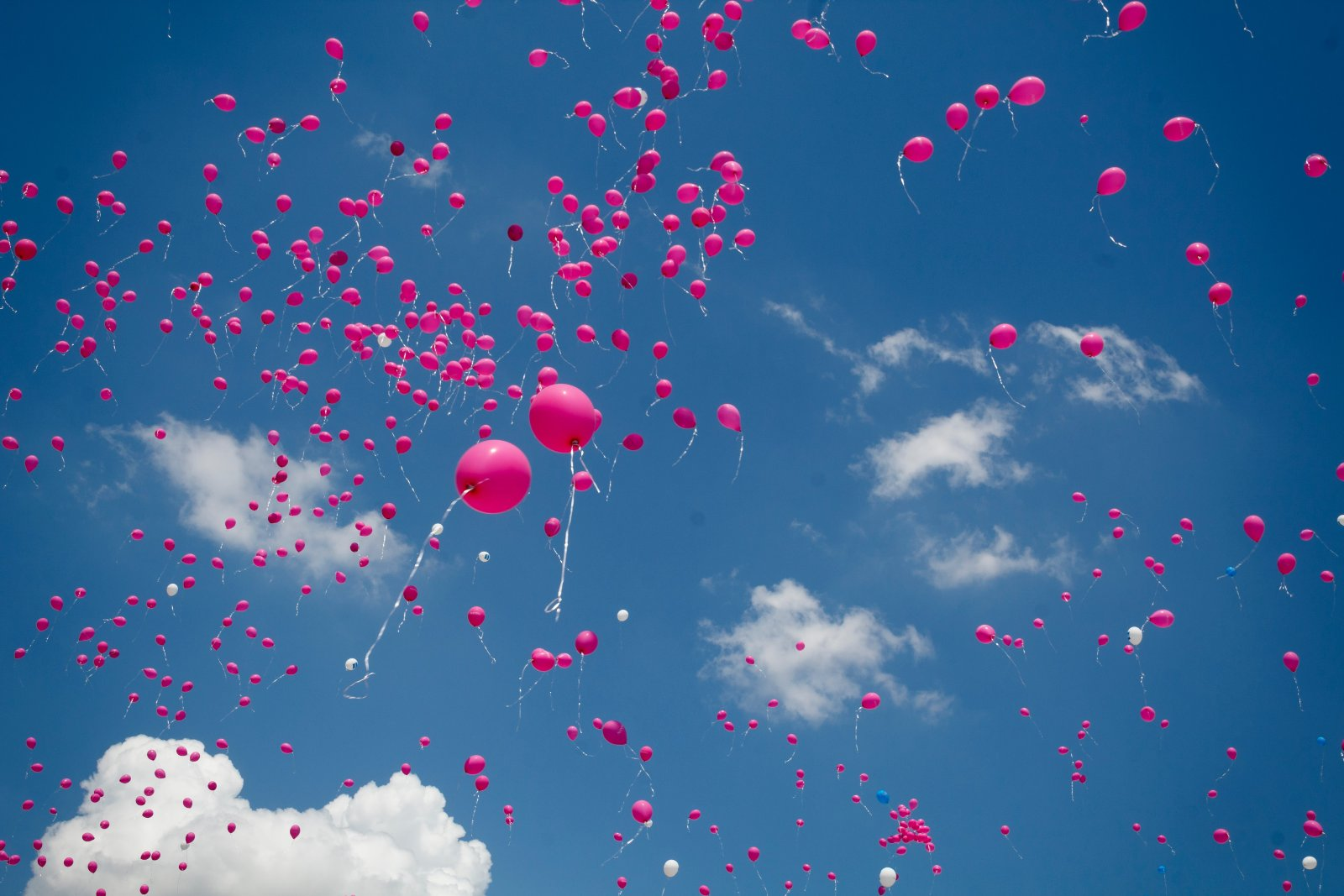 not biodegradable balloons released into the air